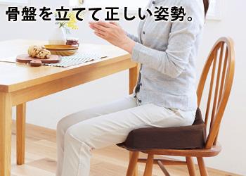 【アイデア雑貨】腰痛対策クッション  コジット