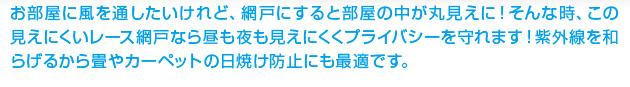 【アイデア商品】見えにくい柄入り網戸レース4.5m